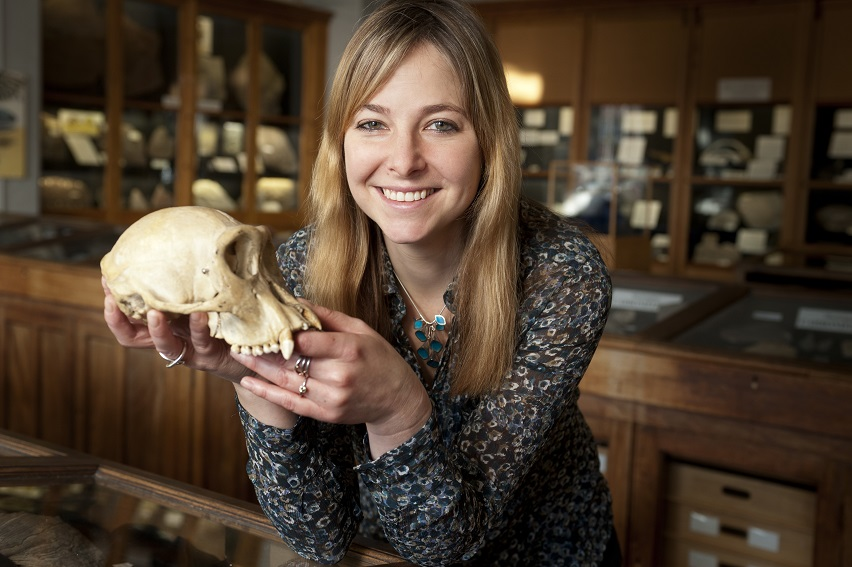 Dr Alice Roberts Wessex Gallery tiny size